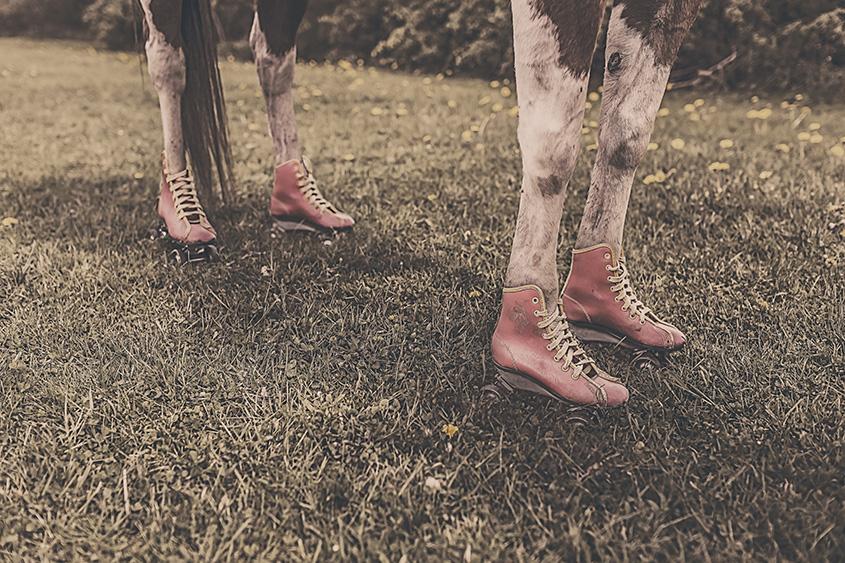 feet-legs-animal-farm